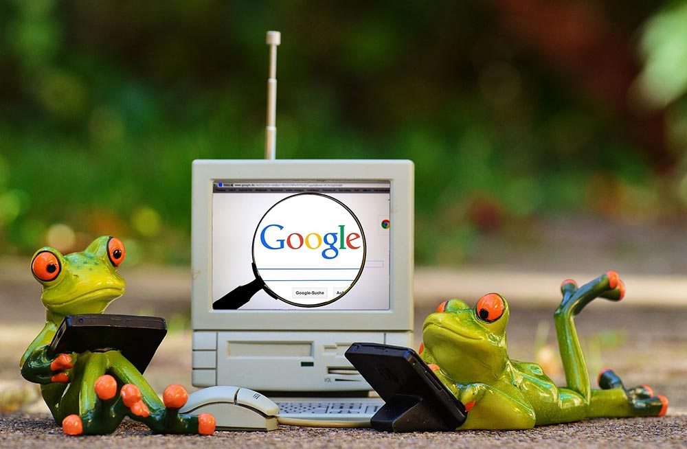SEO Frogs on Computers